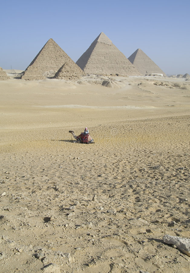 Giza Pyramids Egypt Stock Images