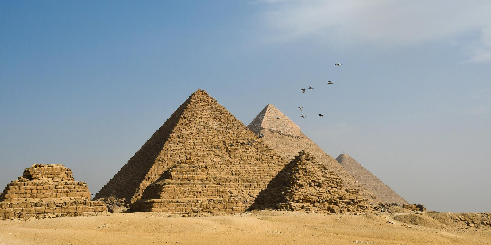 Giza pyramids and flying birds. Cairo, Egypt, Africa royalty free stock photo