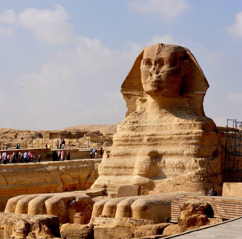 giza sphinx royaltyfria bilder