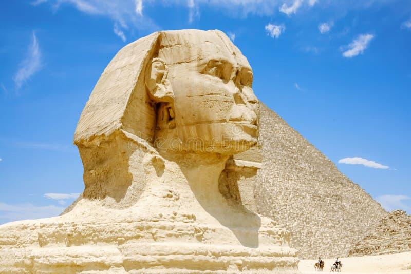 giza stor sphinx egypt royaltyfri bild