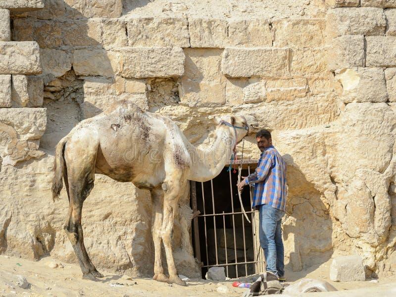 Gizanecropool, Egypte stock afbeelding