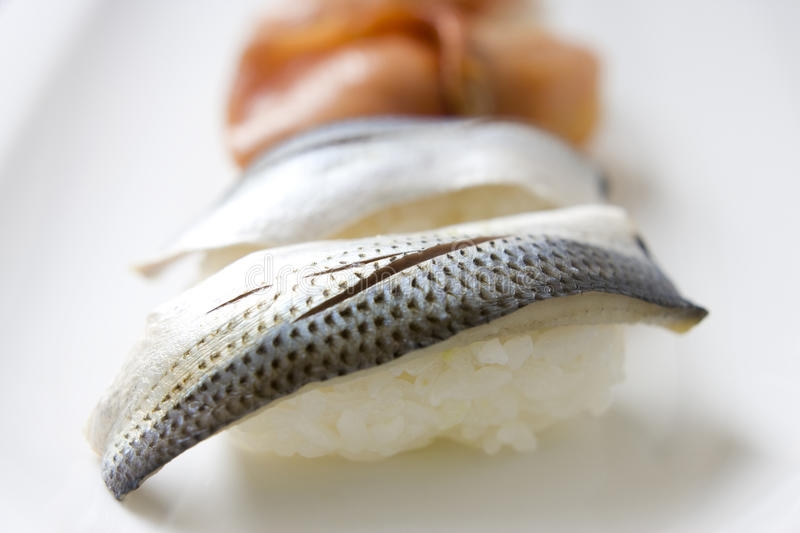 Download Gizzard shad sushi stock image. Image of japanese, shad - 10126703