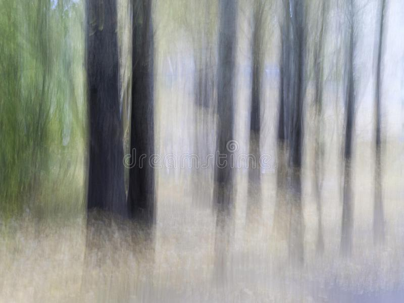 Gjorda suddig trädstammar på en stad parkerar green leaves Avsiktlig kamerarörelseICM Lynniga fina Art Design arkivbilder