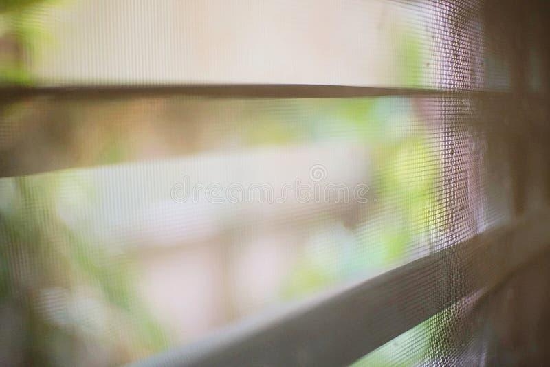Gjort suddig av myggatrådskärmen arkivfoton