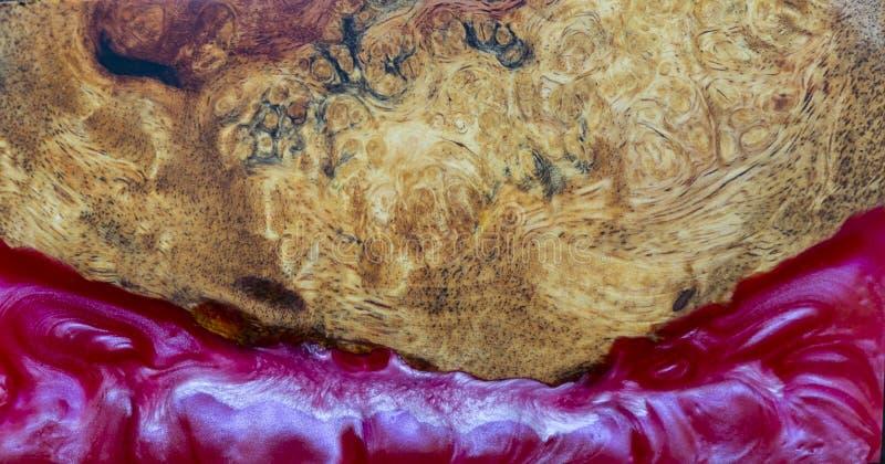 Gjuta epoxy kåda som stabiliserar bakgrund för exotiskt trä för Afzelia burl röd gul, bildfoto för abstrakt konst, tryckdesign oc royaltyfri foto