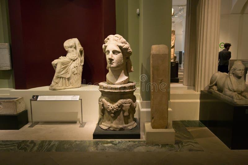 Gjuta gallerit i det Ashmolean museet, Oxford royaltyfria foton