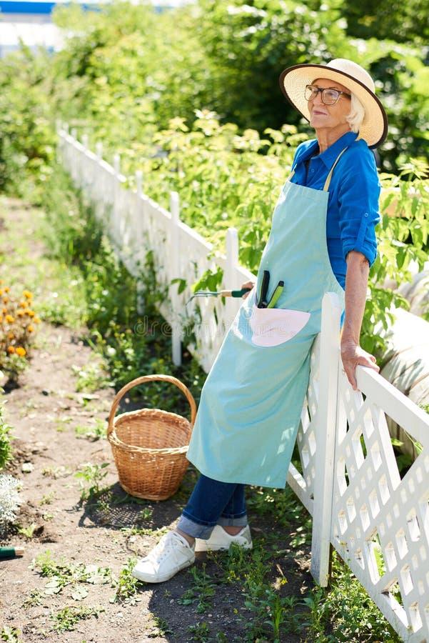 Glücklicher älterer Gärtner Posing durch Plantage stockbild