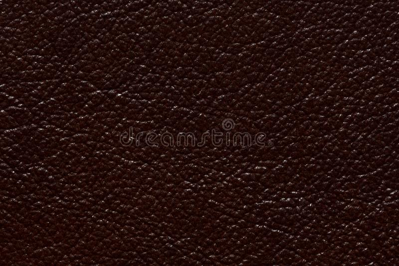 Glänzende lederne Beschaffenheit in der stilvollen braunen Farbe stockbild
