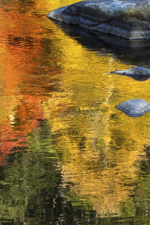 Glänzende Reflexionen von vibrierenden Farben im Herbstlaub, Bezirk, lizenzfreie stockbilder