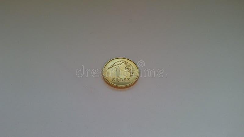 1 glänzender Grosz auf einem weißen Hintergrund stockbild