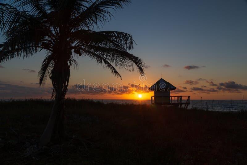 Glänzender Sonnenaufgang über dem Atlantik mit Palme und Leibwächterhütte lizenzfreies stockbild