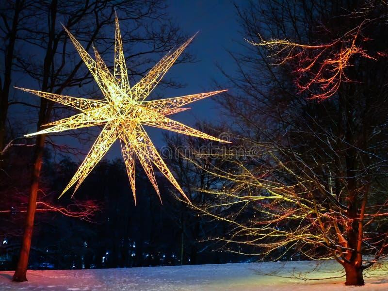 Glänzender Stern am Park ` Wallanlagen-` in Bremen, Deutschland lizenzfreie stockfotografie