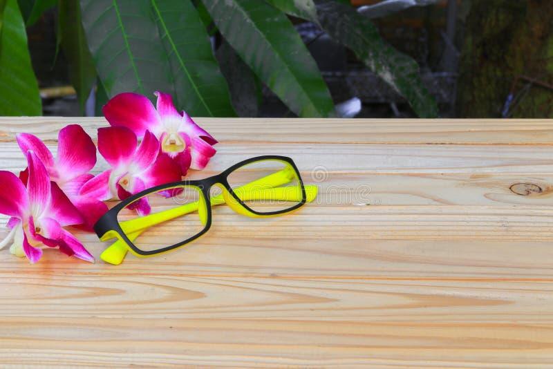 Gläser färben sich mit der purpurroten Orchidee der Blumenorchidee gelb, die auf Bretterbodenbrett über weißem Hintergrund schön  stockfotos