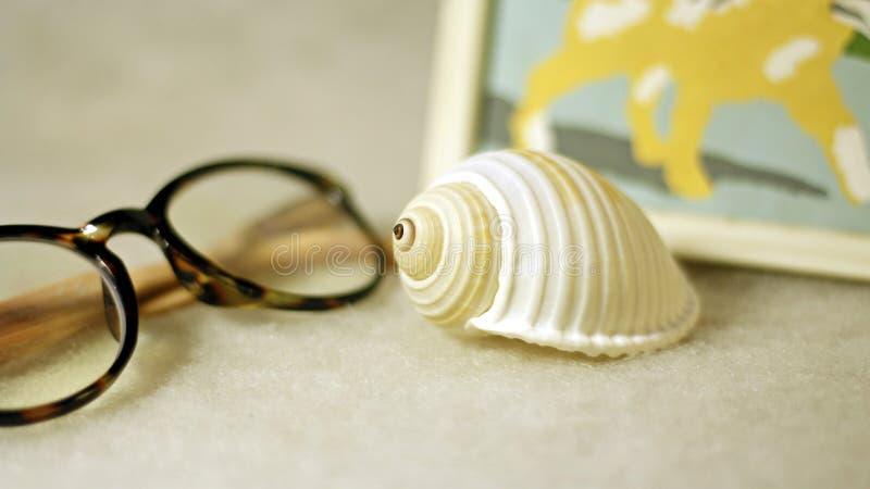 Gläser, Kammmuschel und Bild - Zusammensetzung auf einem hellen Hintergrund stockbilder