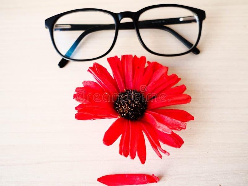 Gläser und eine rote Blume in Form von Gesicht lizenzfreie stockbilder