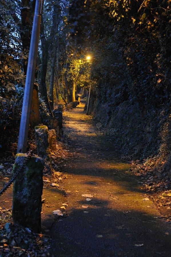 Glättung des Wegs entlang einem belaubten Weg stockfotografie