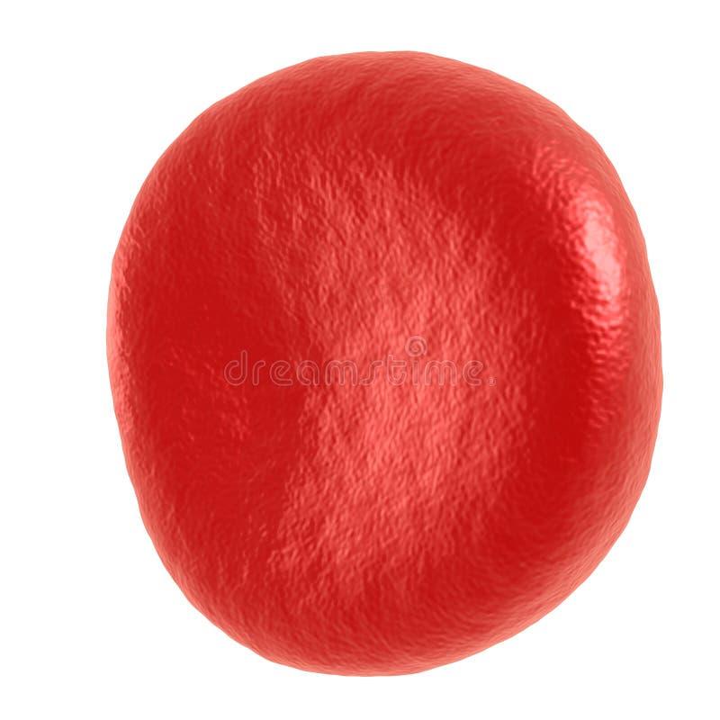 Glóbulo vermelho ilustração do vetor