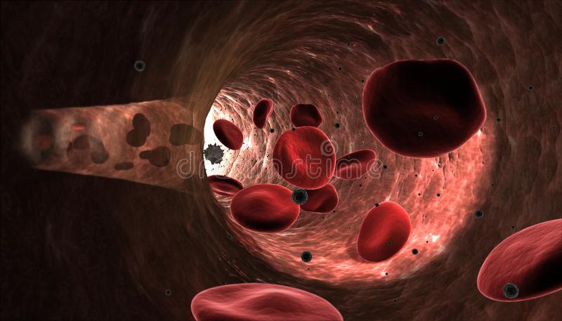 Glóbulos vermelhos que fluem na artéria ilustração do vetor