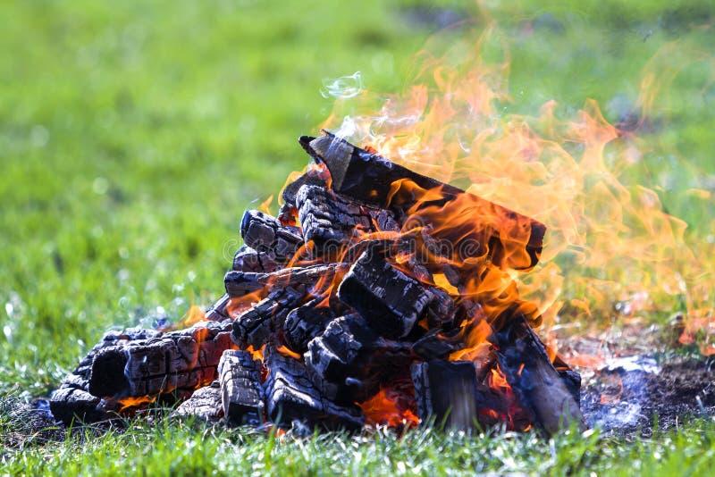 Glödande brasa på naturen Brinnande träplankor utanför på summ royaltyfria bilder