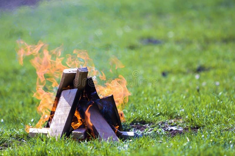 Glödande brasa på naturen Brinnande träplankor utanför på summ royaltyfri bild