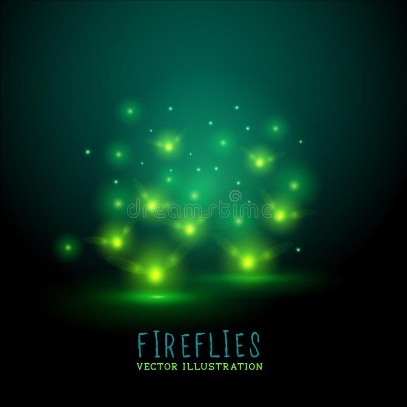 Glödande Flireflies vektor illustrationer