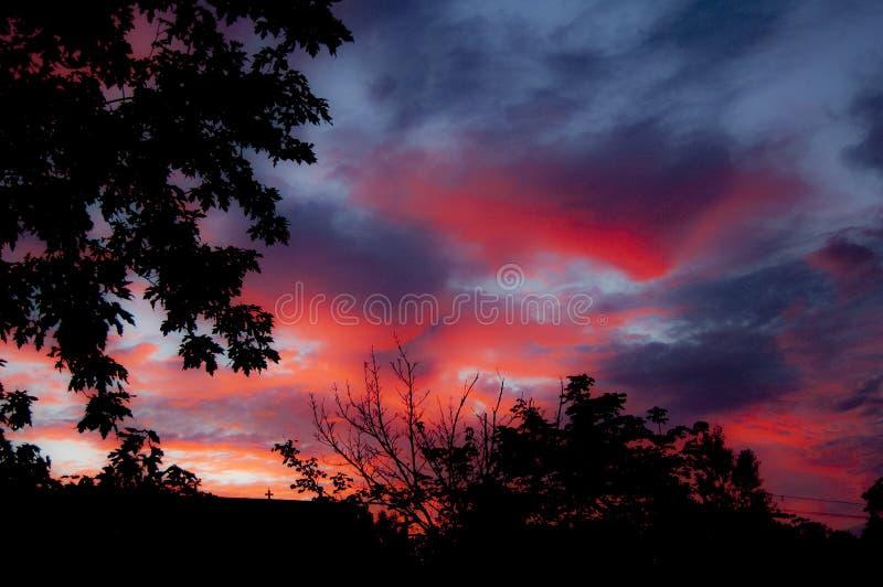 Glödande soluppgång med trädkonturn fotografering för bildbyråer