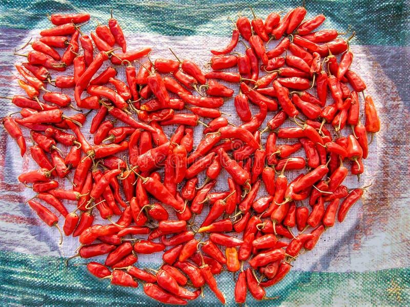 Glödheta chili - älska, varmt och kryddigt hjärtabegrepp arkivbilder