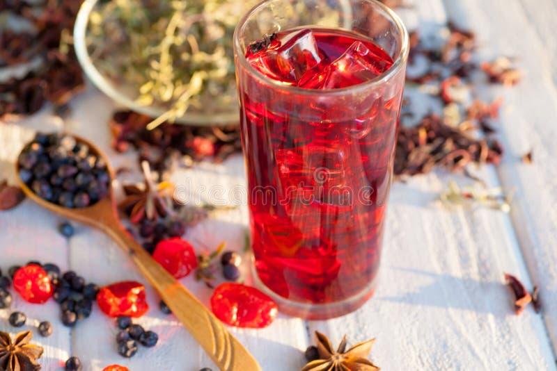 Glödhett hibiskuste i ett exponeringsglas rånar arkivfoto