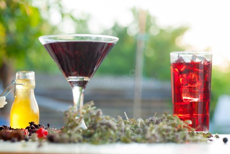 Glödhett hibiskuste i ett exponeringsglas rånar royaltyfri bild