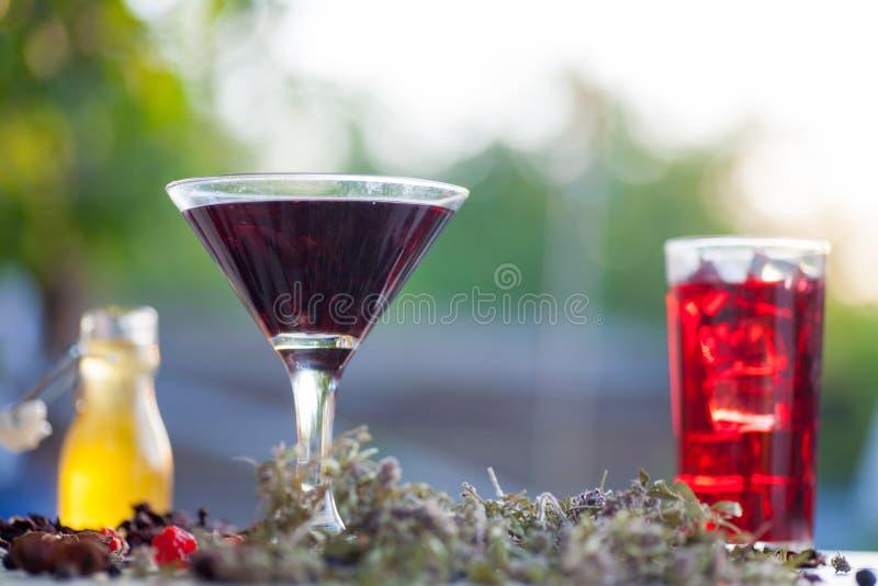 Glödhett hibiskuste i ett exponeringsglas rånar royaltyfri foto