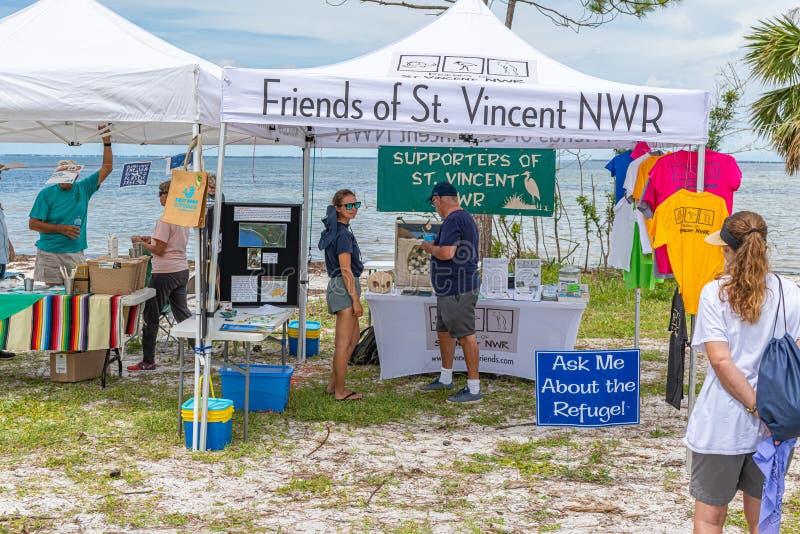 Glömd festival för kusthavssköldpadda royaltyfri foto