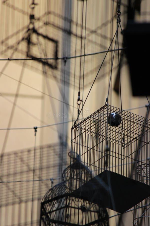 ` Glömd sång`, hängande tomma fågelburar royaltyfri foto