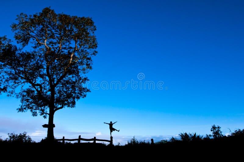Glück, Freiheit, Schattenbild, Landschaft lizenzfreie stockfotos