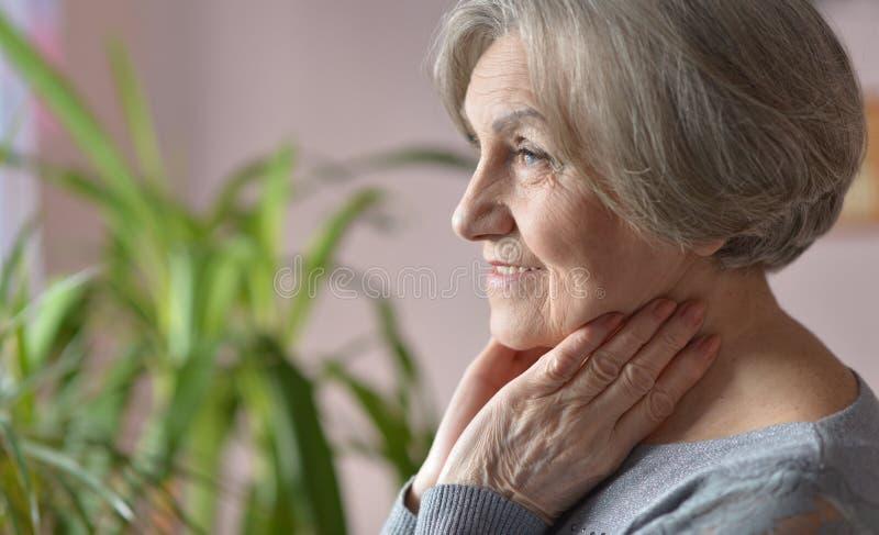 Glückliche ältere Frau lizenzfreies stockbild