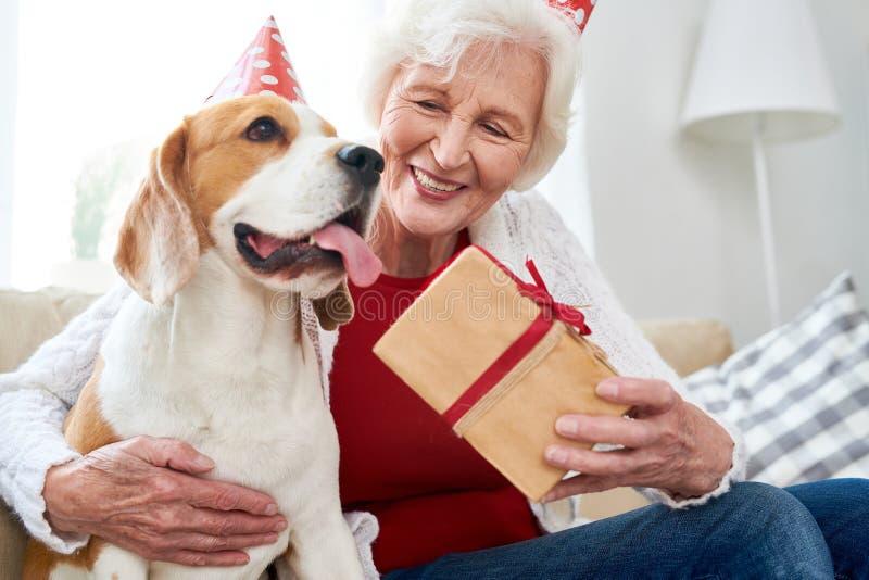 Glückliche ältere Frau, die Geburtstag mit Hund feiert lizenzfreie stockbilder
