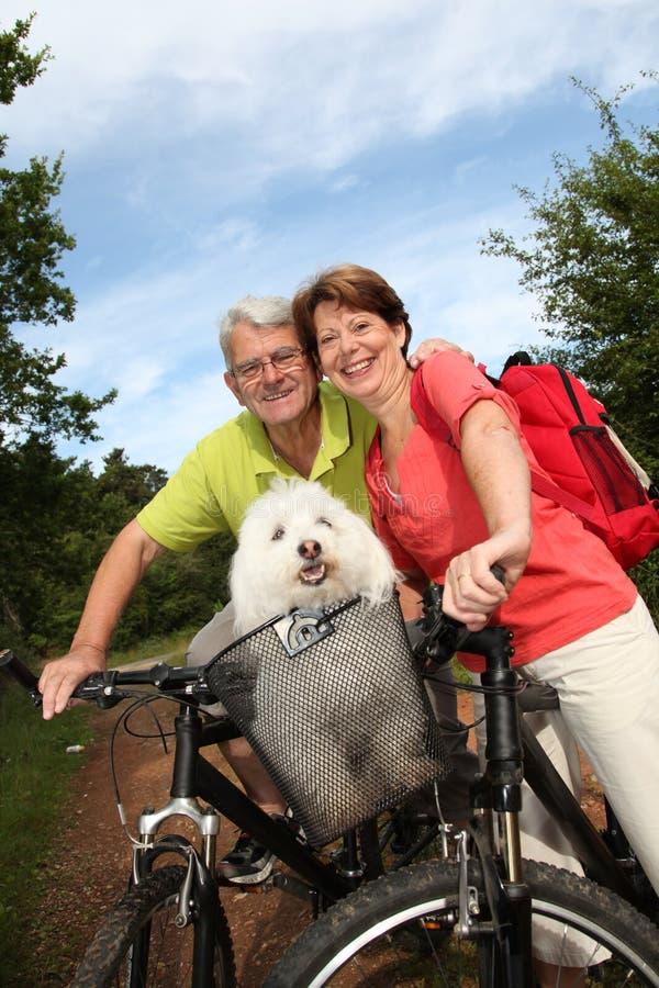 Glückliche ältere Paare auf einer Fahrradfahrt lizenzfreies stockfoto