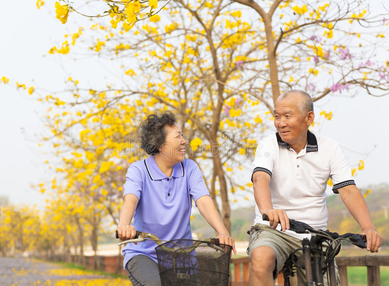 Glückliche ältere Paare fahren auf Fahrrad im Park stockfotografie