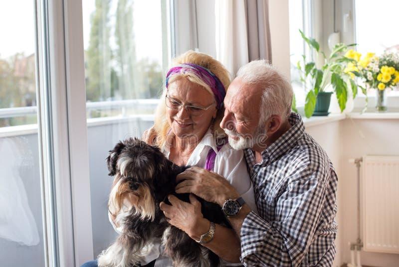 Glückliche ältere Paare mit Hund stockbilder