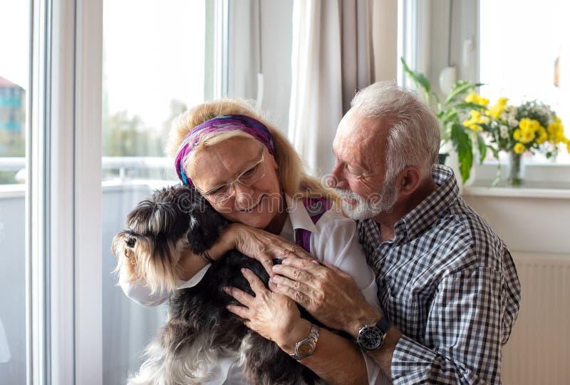 Glückliche ältere Paare mit Hund stockfotografie