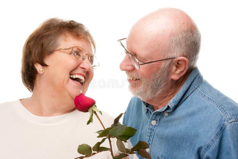 Glückliche ältere Paare mit roter Rose stockbilder