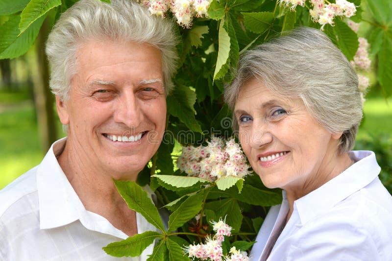 Glückliche Ältestpaare lizenzfreie stockfotos