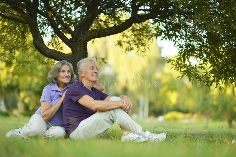 Glückliche alte Leute lizenzfreie stockbilder