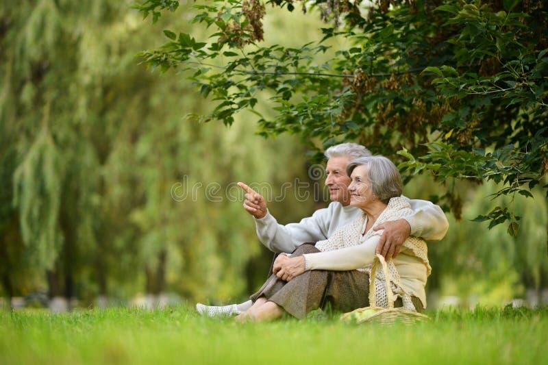 Glückliche alte Leute stockbilder