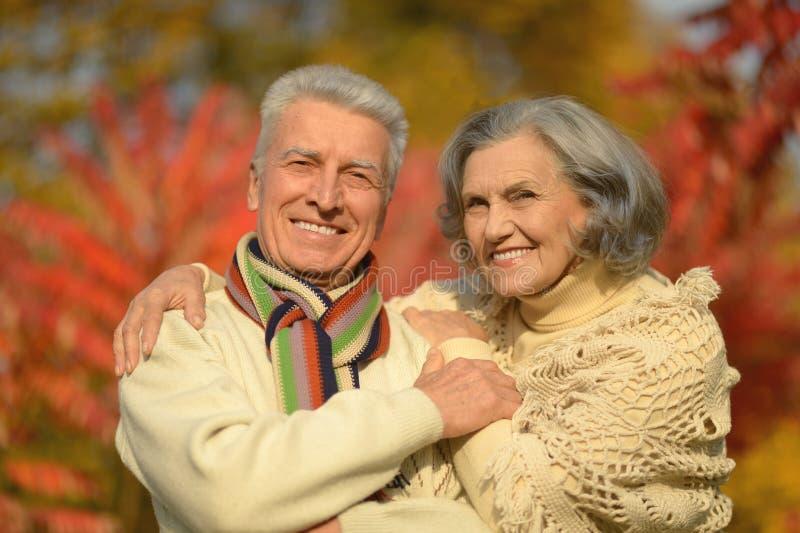 Glückliche alte Leute lizenzfreie stockfotografie