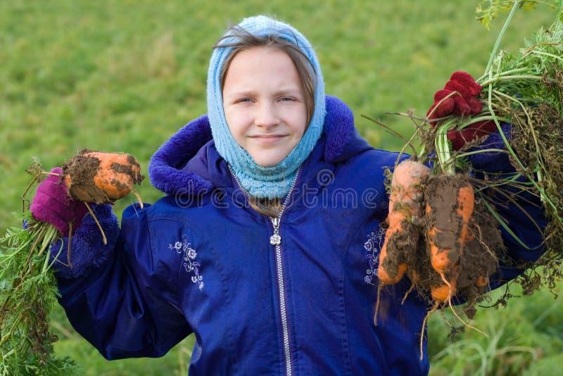 Glückliche ausgewählte Karotten der Kindholding frisch. lizenzfreie stockfotografie