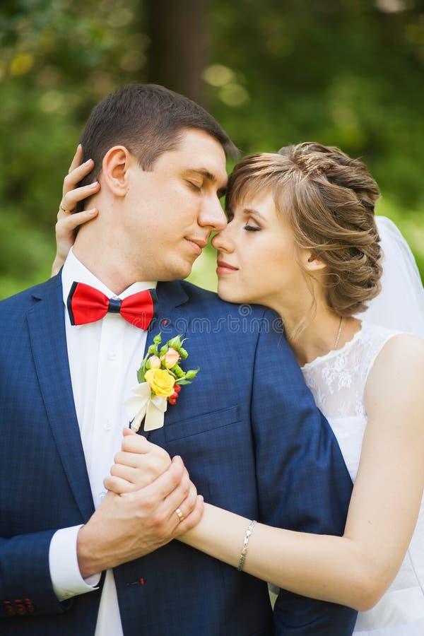 Glückliche Braut, Bräutigam, der im grünen Park steht stockbilder
