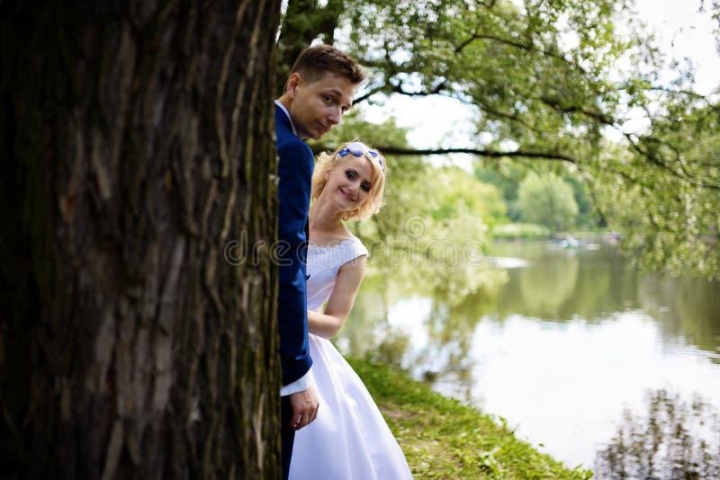 Glückliche Braut und Bräutigam auf ihrer Hochzeit nahe dem See, zum wegen des Baums heraus zu schauen stockbild