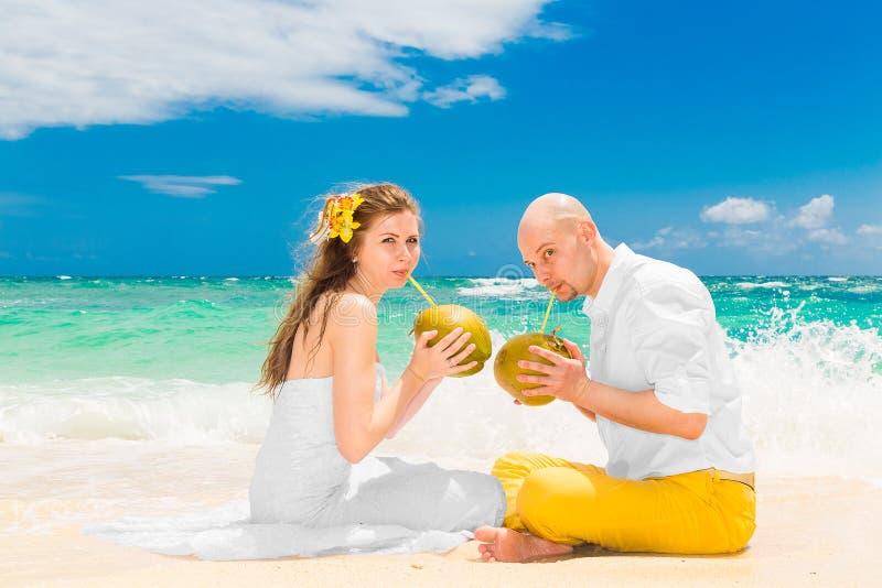 Glückliche Braut und Bräutigam trinken Kokosnusswasser und Habenspaß auf einem tr lizenzfreie stockbilder