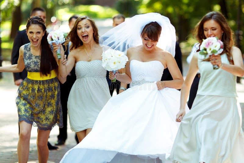 Glückliche Braut und Brautjungfern gehen entlang den Weg im Park stockfotos