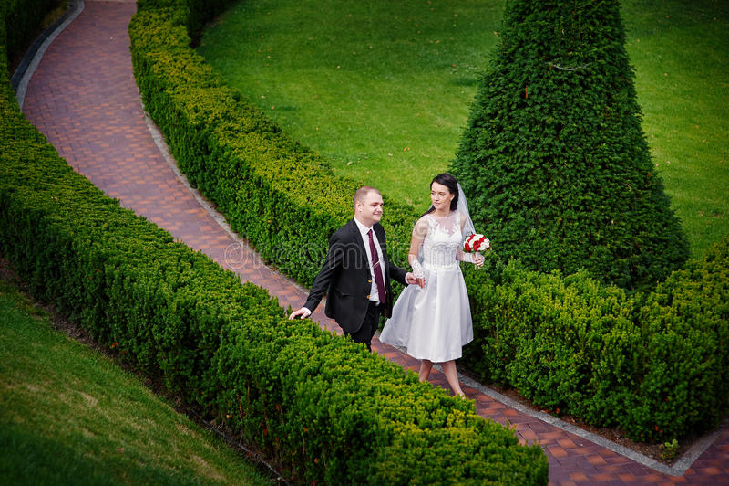 Glückliche Braut und der Bräutigam, die in einen Sommer geht, parken lizenzfreies stockbild